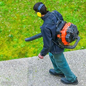 Shopping for the Best Leaf Blower for You