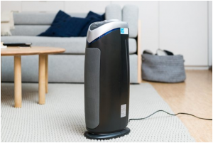 The Best Air Purifier for Fighting Allergy