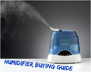 Warm Mist Humidifier versus Cool Mist Humidifier Benefits