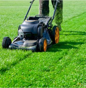 Lawn Mower Storage Tips You Need to Know
